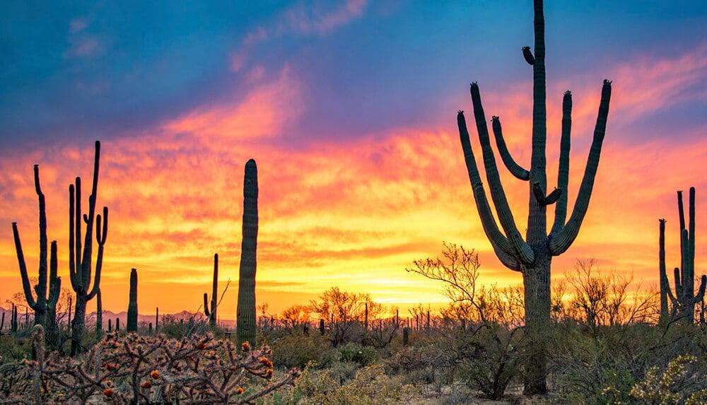 Mesa-Sunset_Enjoy-Arizona-Living_02