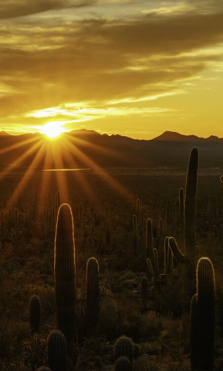 Mesa-Sunset_Love-Your-Life-Here_01